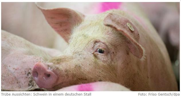 Protest gegen Klöckners Sauerei