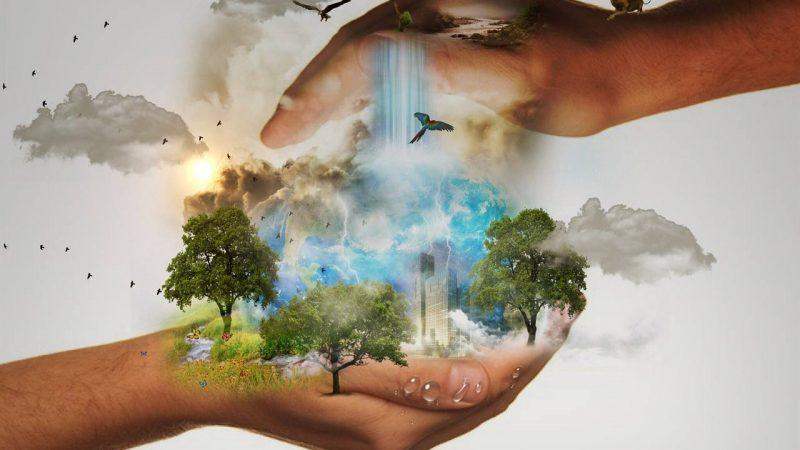 Politiker und Konzerne fordern grünen Umbau der Wirtschaft