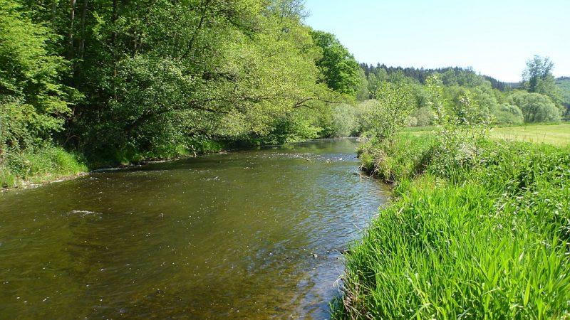 Erhalt der Artenvielfalt in Fließgewässern