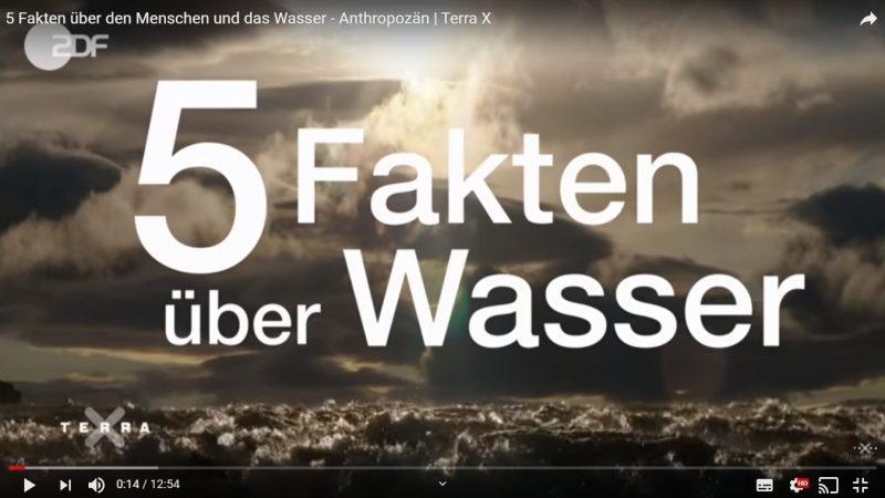 5 Fakten über den Menschen und das Wasser