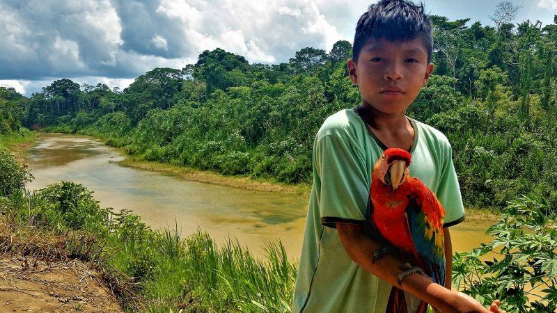 Mehrwert von Klimaschutzprojekten