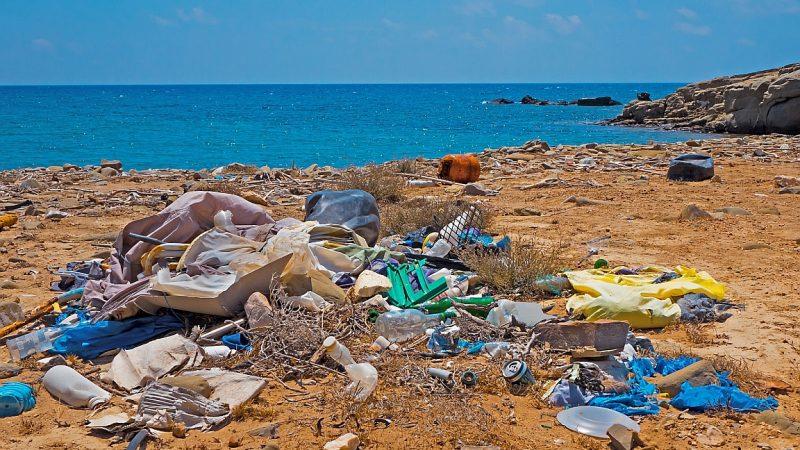 Wundermaterial als Plastik-Ersatz