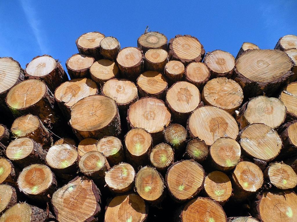 Holzstapel wood 1652045 1920 succo Pixabay CC PublicDomain