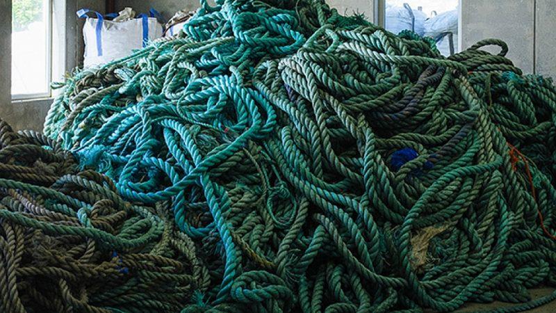 Plastikseile und Fangnetze zu Viren-freien Tabletts
