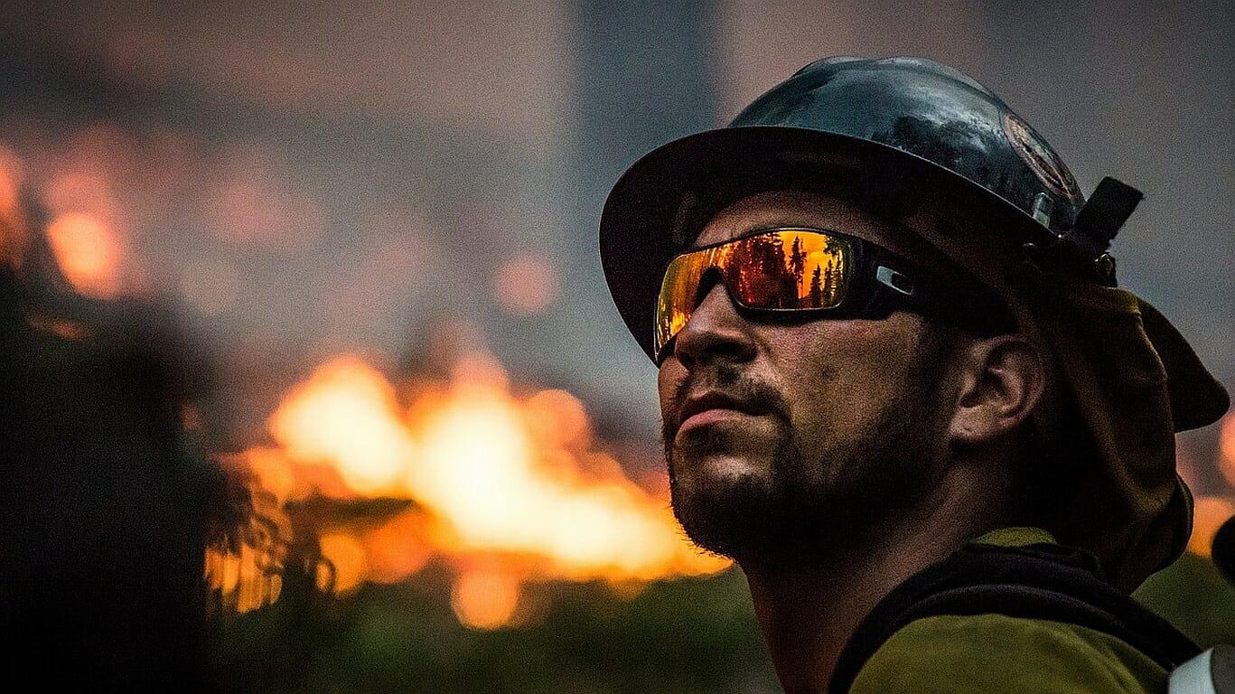 Australien: Fehler der Förster legte Waldbrände
