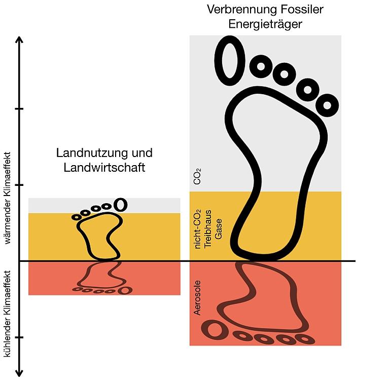 Grafik GEOMAR