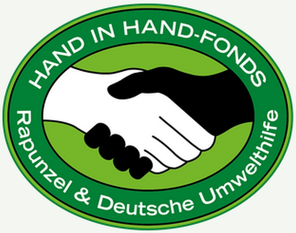 Logo Hand in Hand Fonds