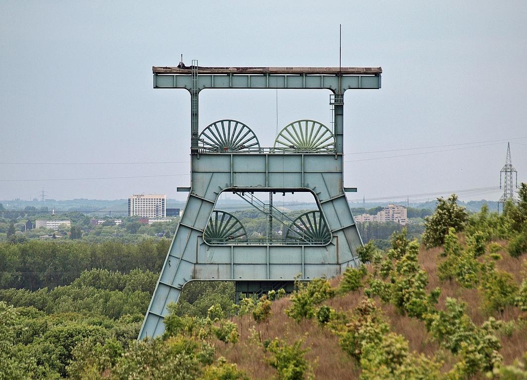 Neue grüne Lernorte im Ruhrgebiet