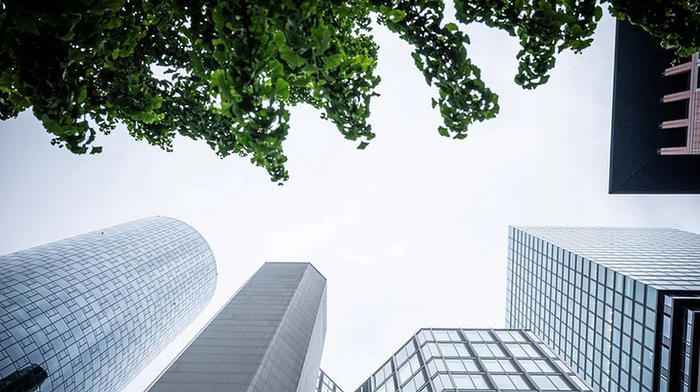 Banken wollen mehr Klimaschutz