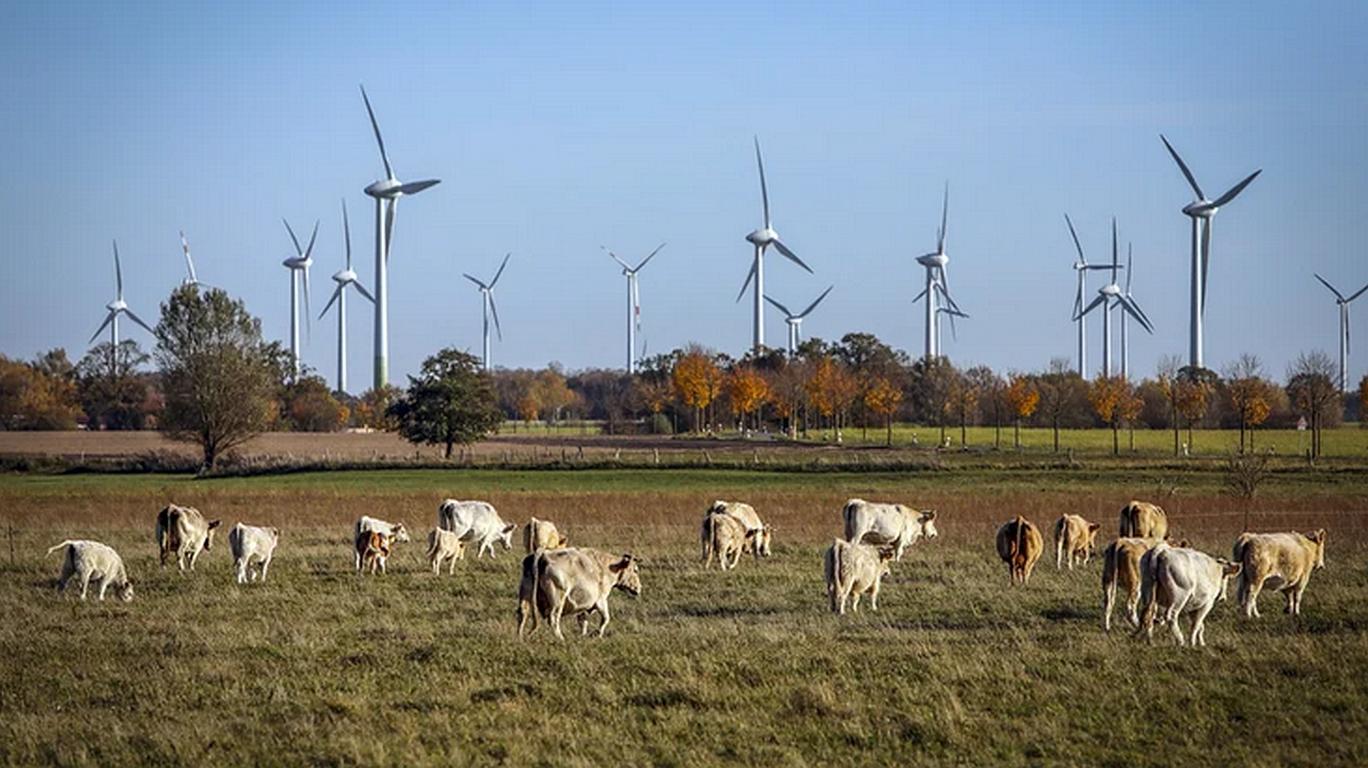 EU-Klimaziel machbar: mit weniger Fleisch und Abgasen
