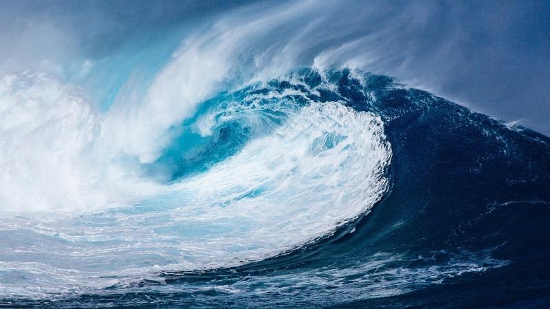 Umfrage bestätigt die Sorge um Zustand der Meere