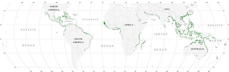 World map mangrove distribution
