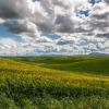 Landschaft Winräder