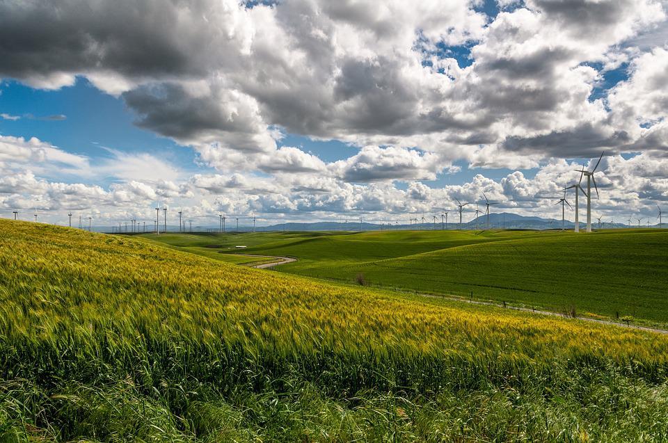 Nachhaltige Unternehmen aufbauen