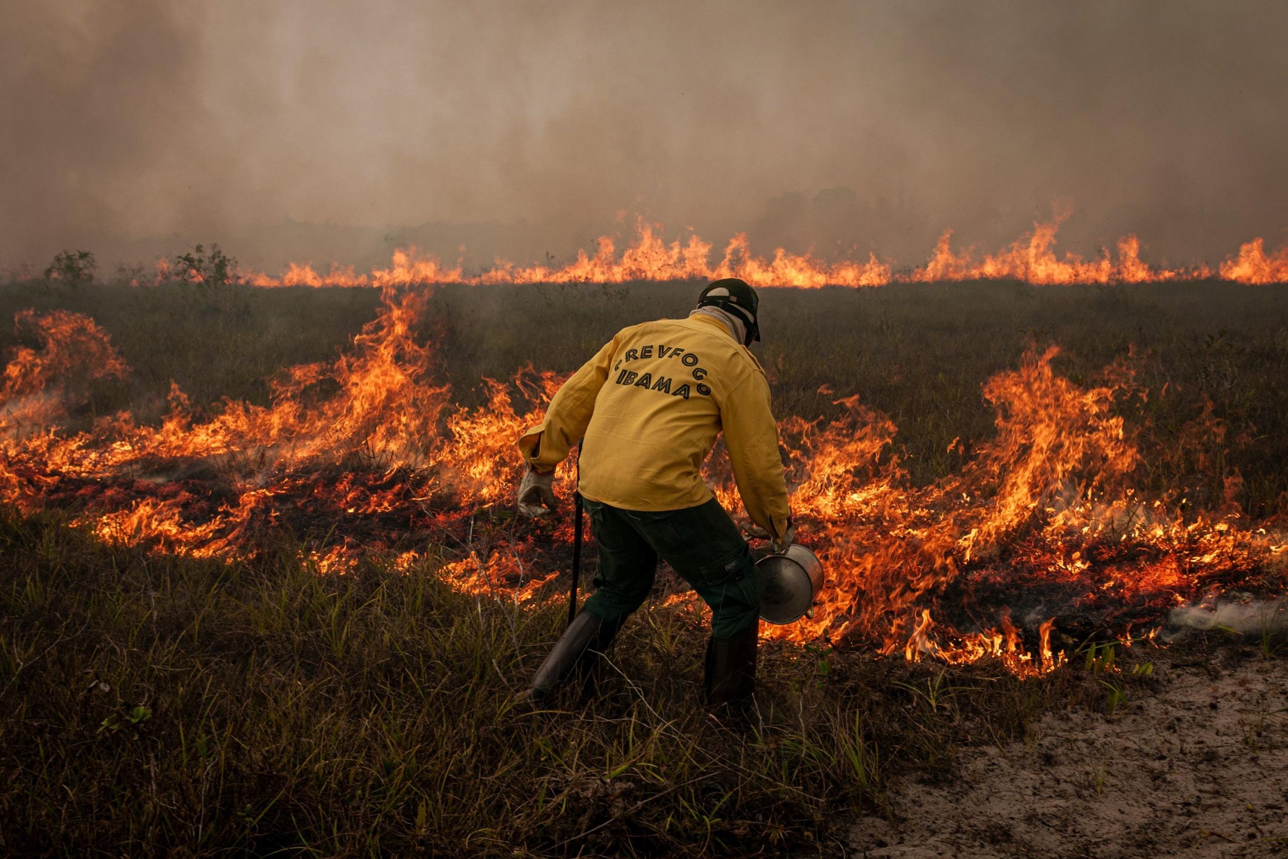 Rekordbrände in Brasilien