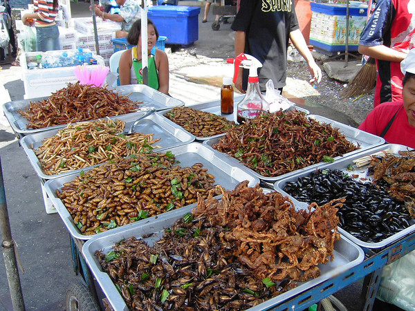 Insect food wikiccbysa30 8afb64b61d