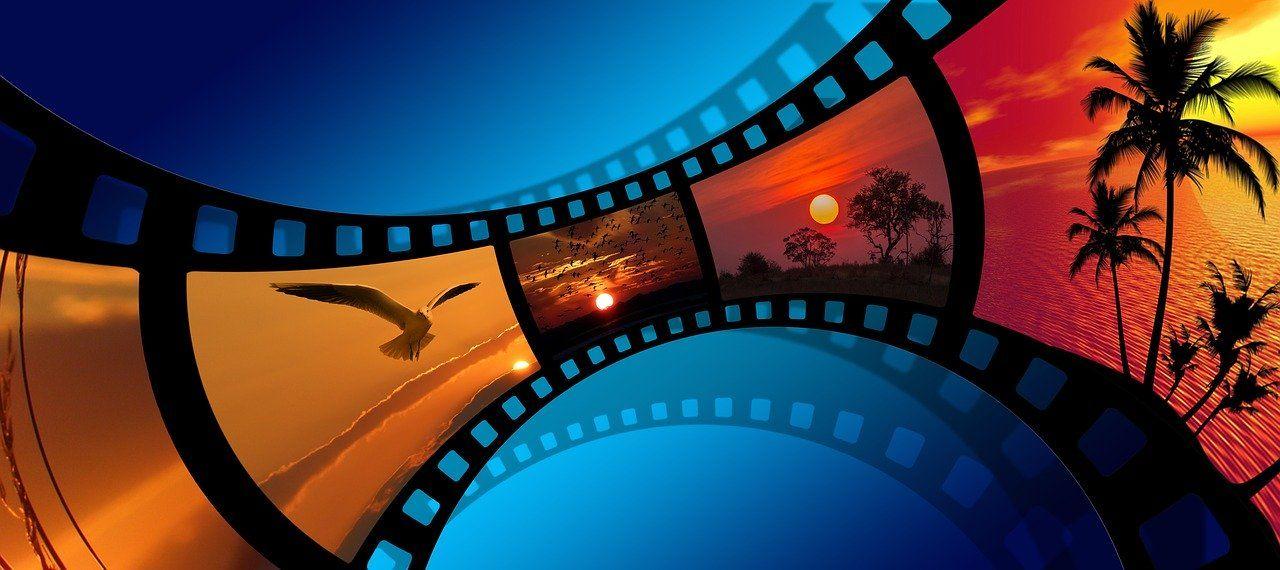 Zusammenarbeit von ökoligenta und Filming for Change