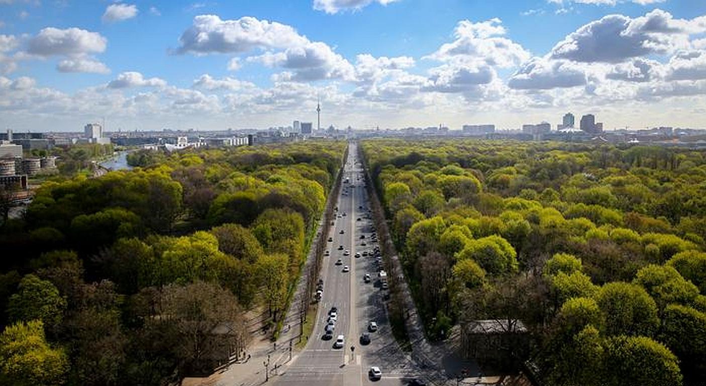 Klimawandel: Bäume helfen Städten gegen die Hitze