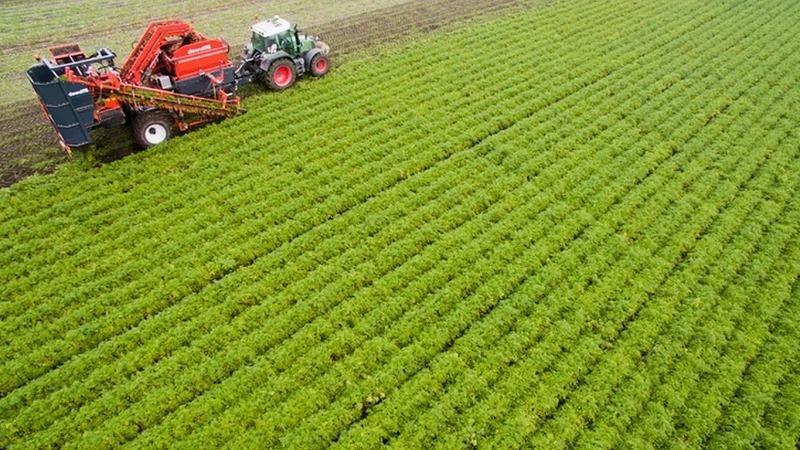 Mehr Ökobauern beackern ihre Felder