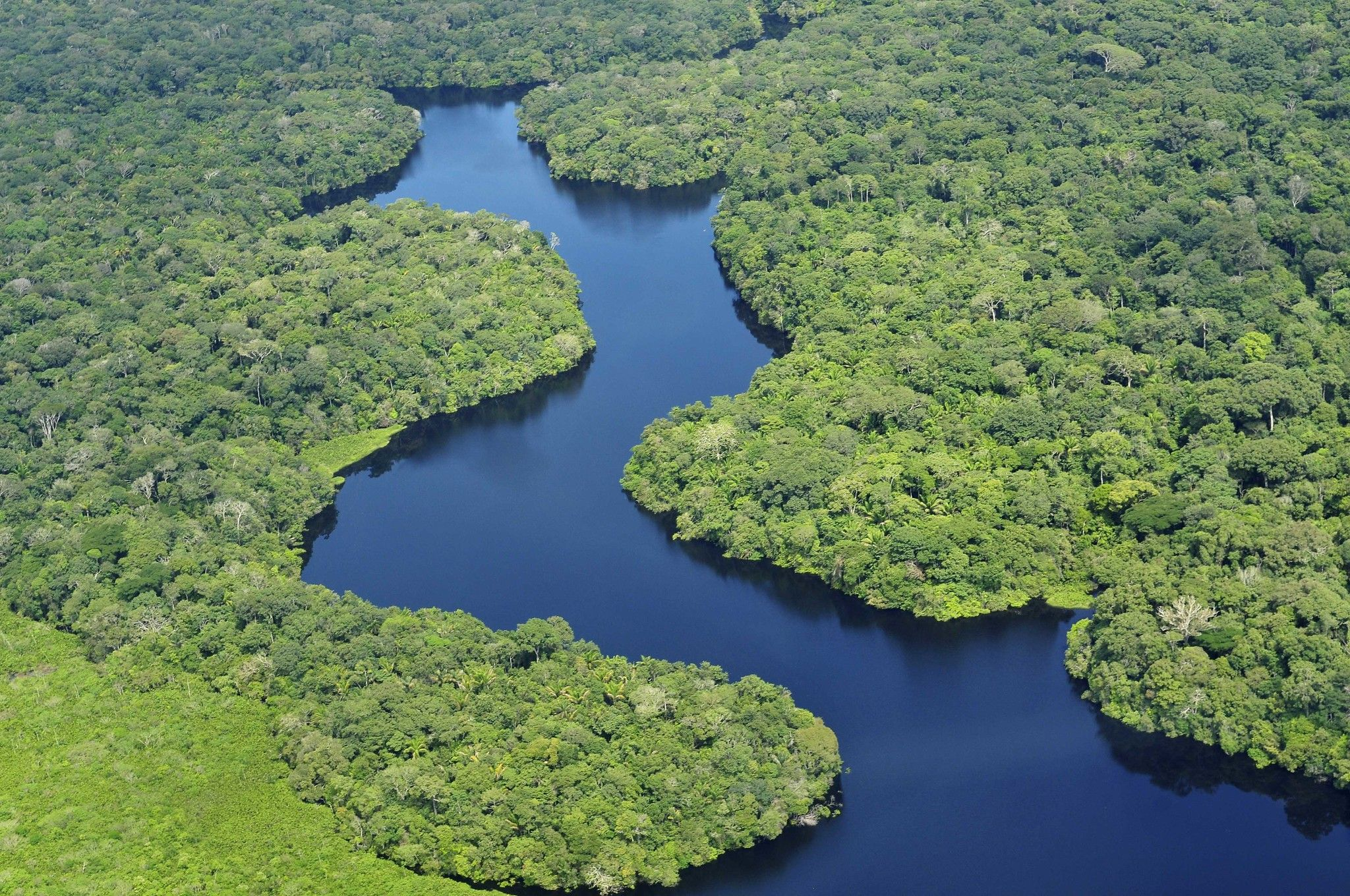 Amazonas-Regenwald:  lebensbedrohliche Dürren