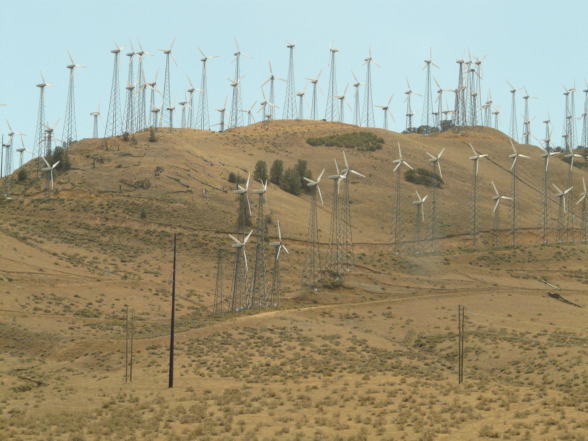 Klimaschutz in Zeiten von Corona