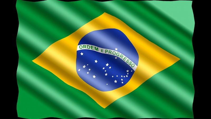 Brandstifter Bolsonaro: Umweltfrevel in Brasilien