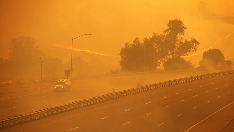 Wälder brennen: Kalifornien ruft Notstand aus