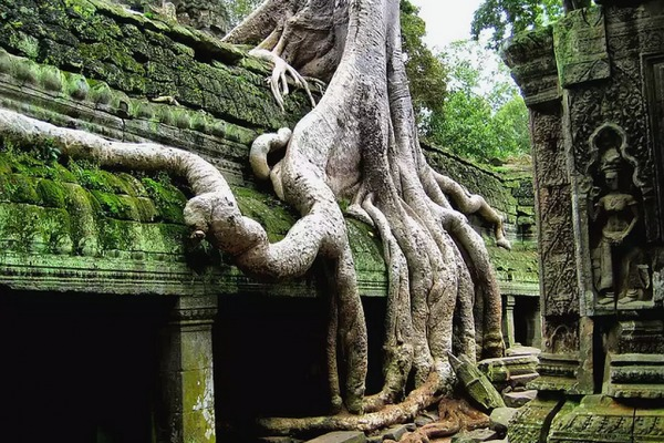 Tempel von Angkor Wat in Kambotscha
