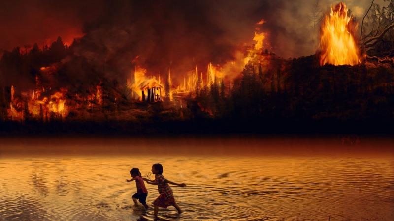 Brasiliens bedrohte Galeriewälder