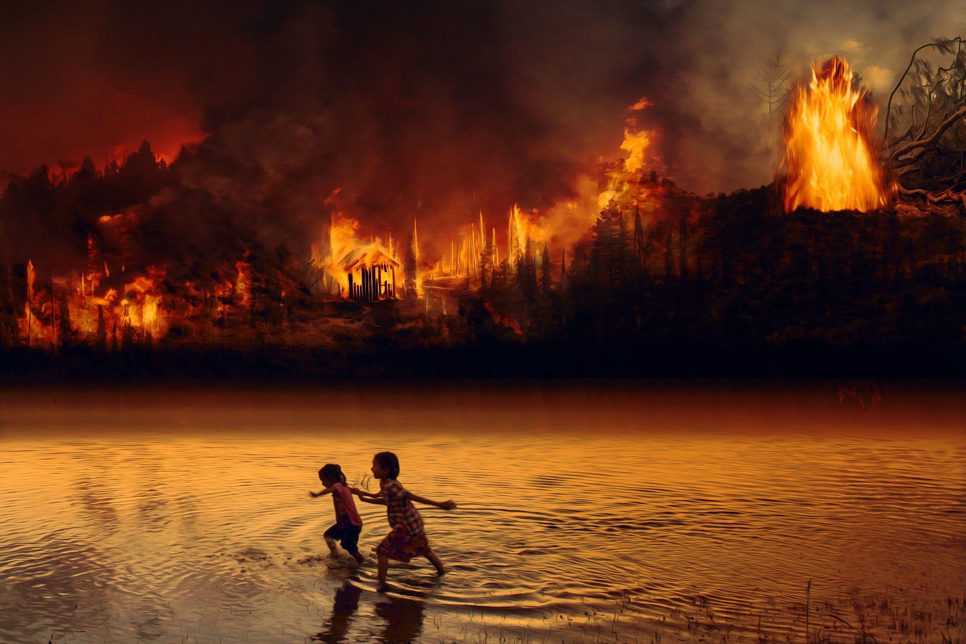Der Amazonas brennt stärker als vor einem Jahr