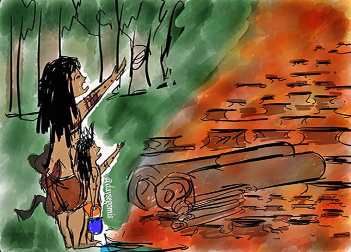 Der Amazonas-Regenwald schreit nach Hilfe!