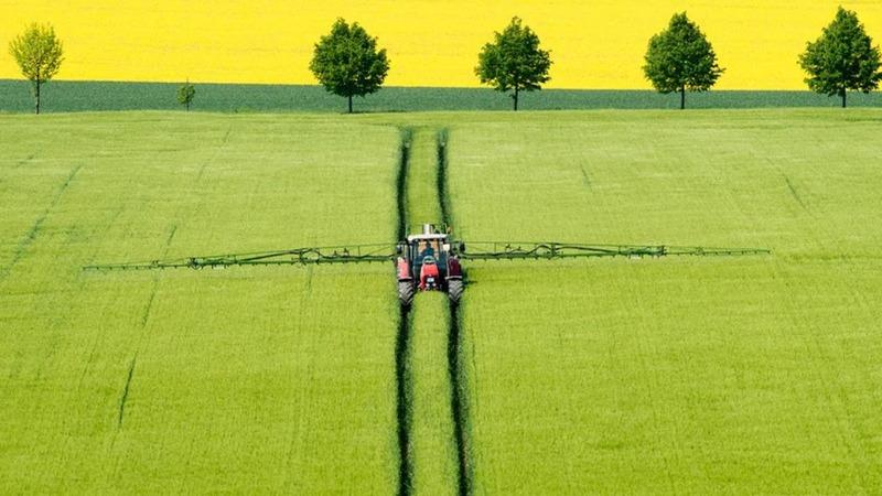 Studie zu Pestiziden: Kein Entrinnen möglich