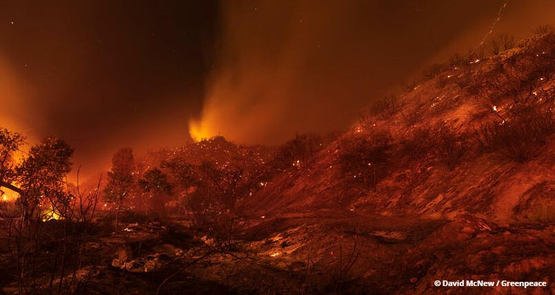 Kalifornische Waldbrände