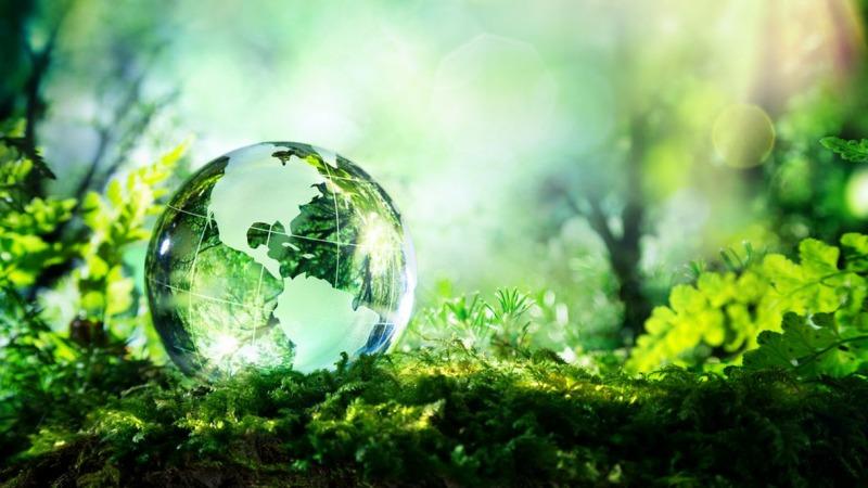 Brambles: Pläne für weltweit regenerative Lieferketten