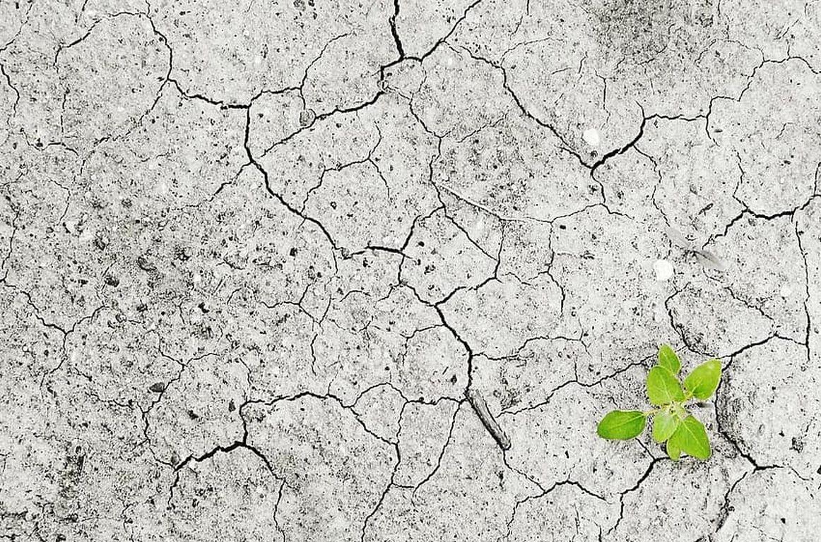Bruchteil der COVID-Hilfe reicht für Klimawende