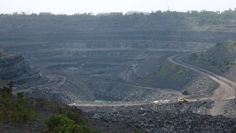 Indien: Fragliche Autarkie auf Kosten des Urwalds
