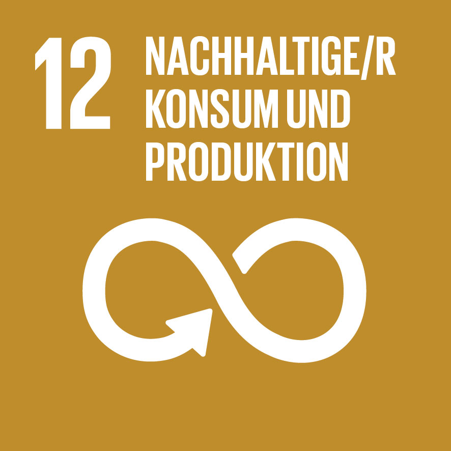 SDG icon DE 12