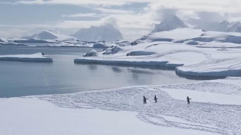 Die große Eis-Schmelze