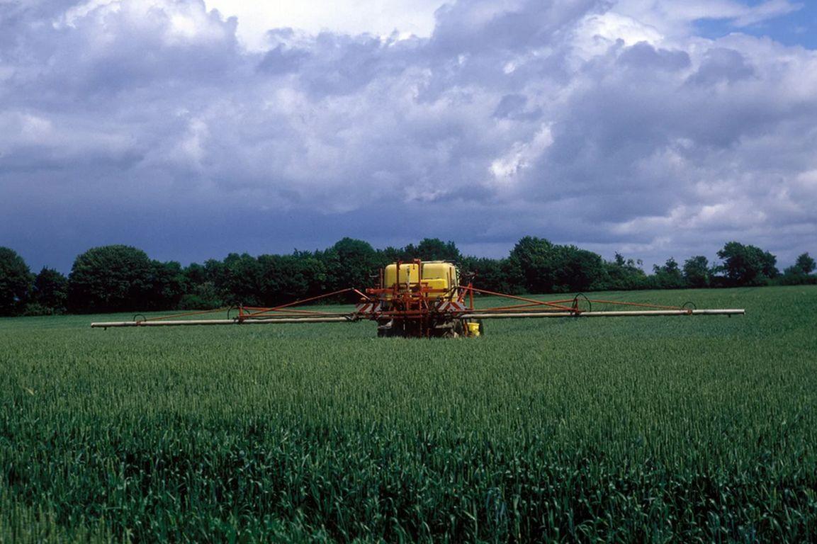Wissenschaft für Öko-Wende in der Landwirtschaft