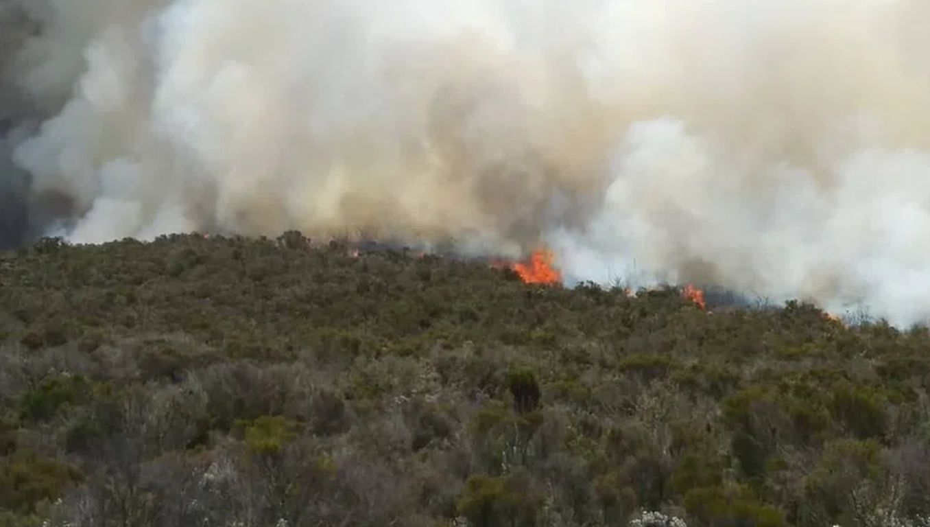 Feuer am Kilimandscharo bedroht Reservate in Kenia