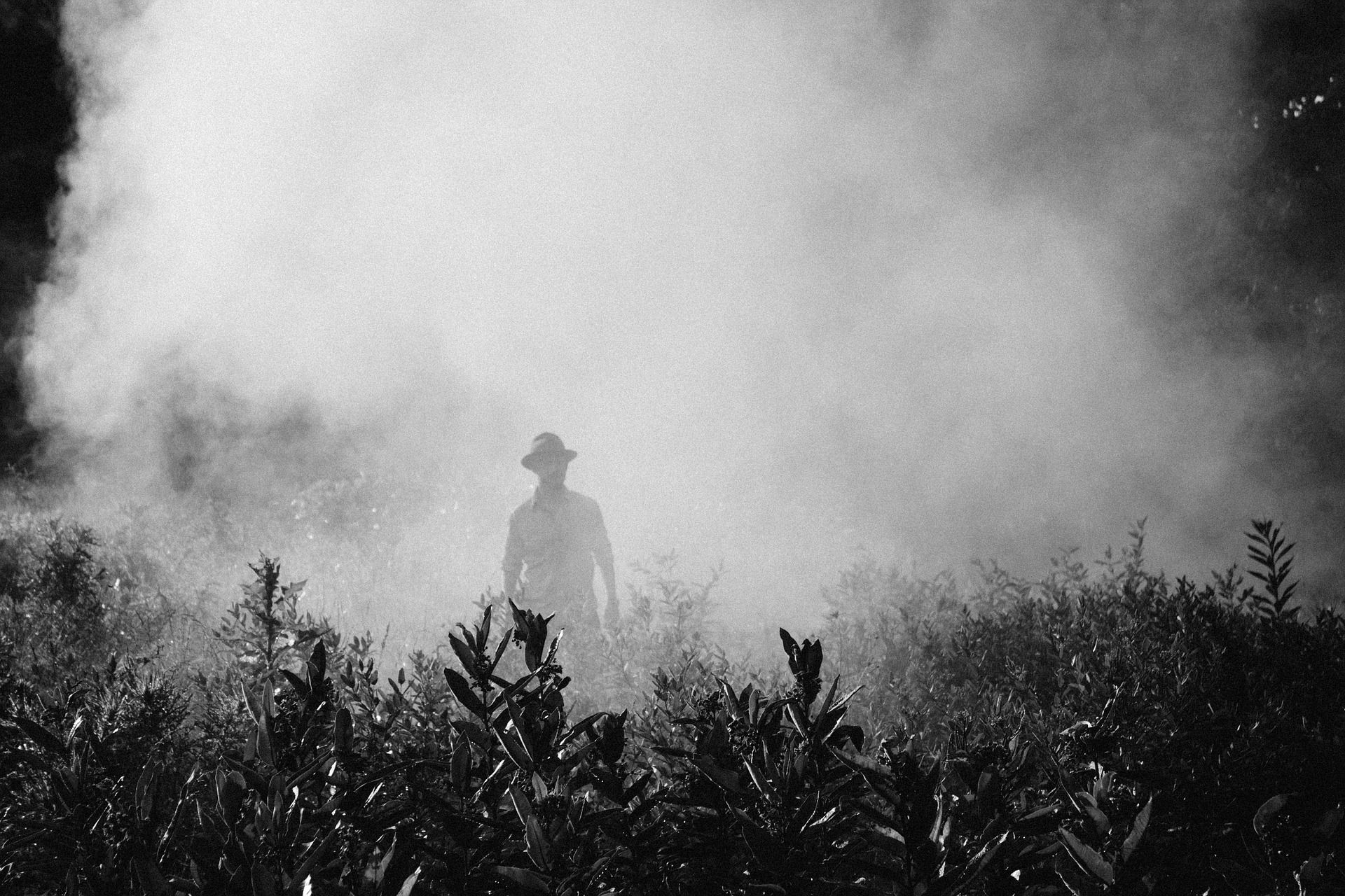 EU-Kommission offen für Exportverbot von Pestiziden