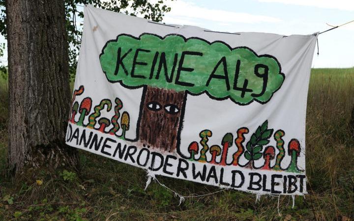 Sofortiger Räumungs- und Rodungsstopp im Dannenröder Wald und Herrenwald!