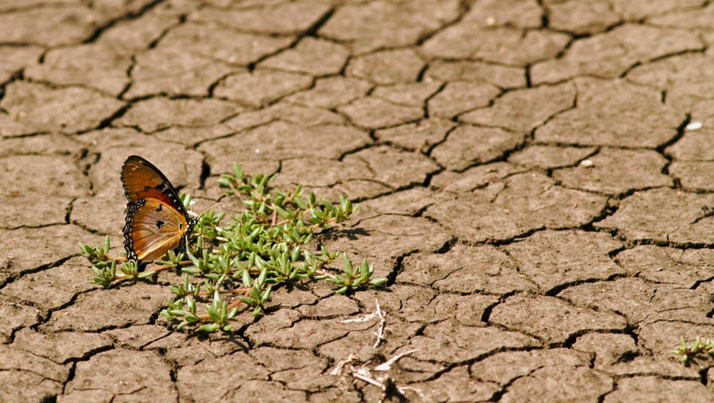 5 Jahre Klimaabkommen: 5 falsche Klimaversprechen