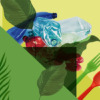 WJ 20 Bioplastik Motivbanner 978x550px