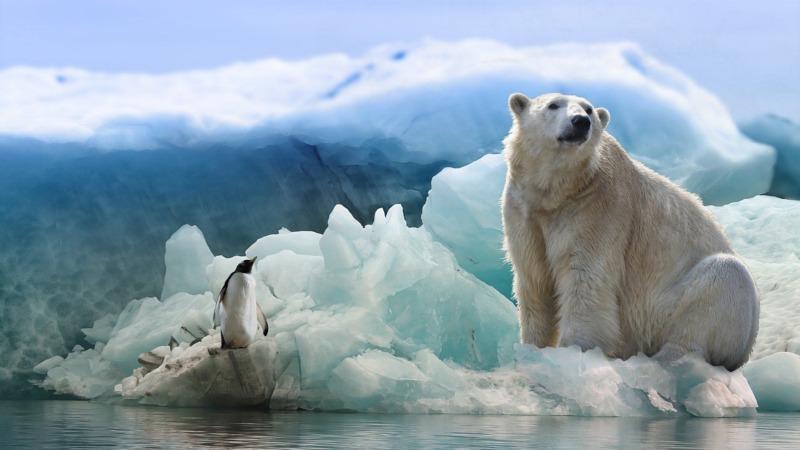 Norwegen darf in Arktis Öl suchen