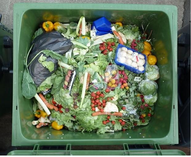 Warum werfen wir Lebensmittel in die Tonne?