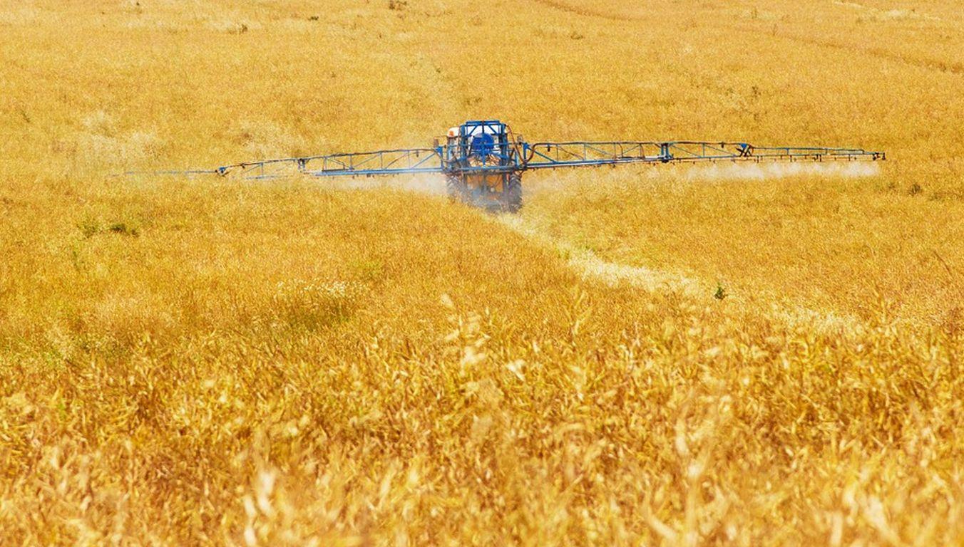 Bundesregierung muss Insektenschutz umsetzen