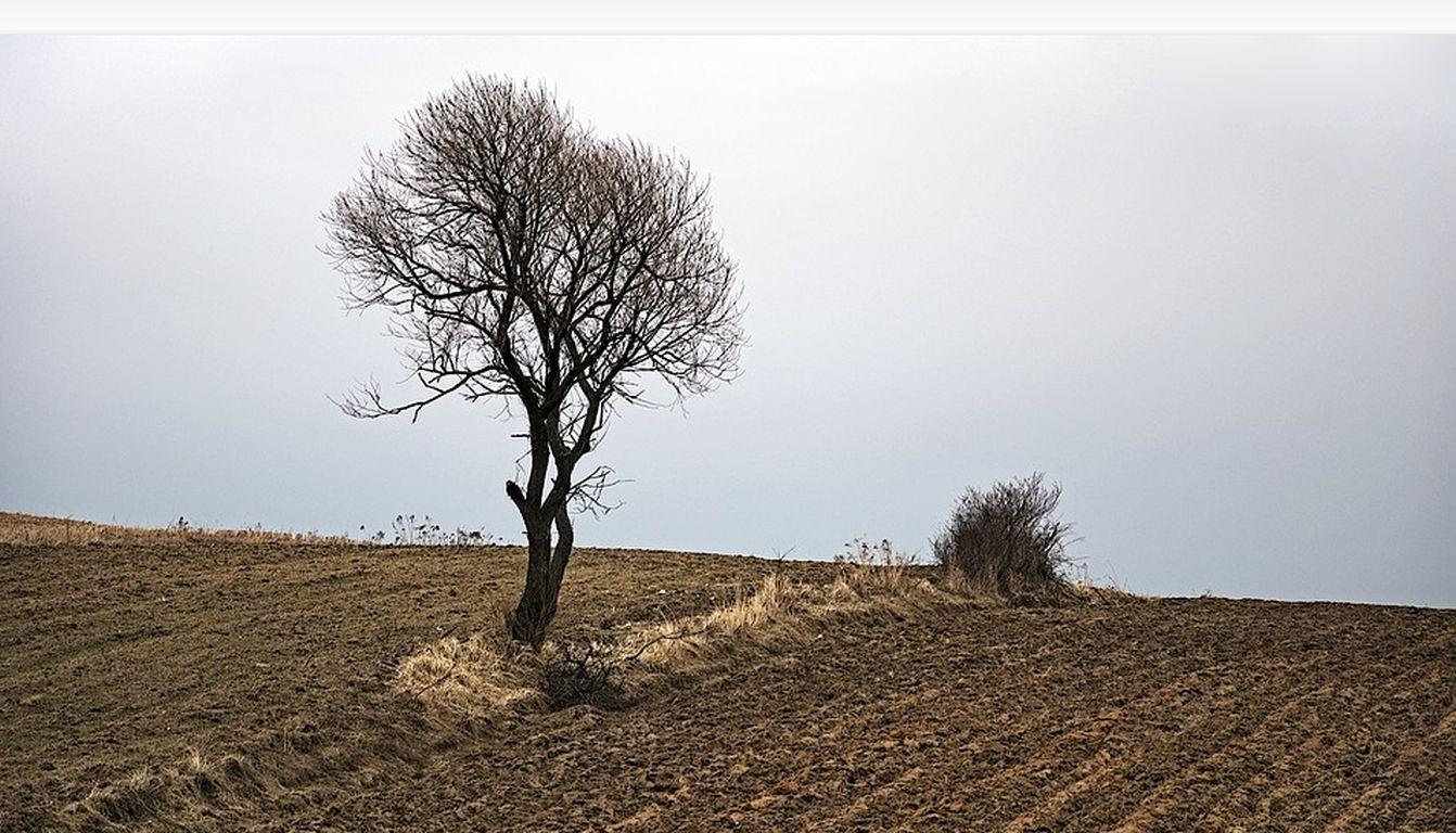 Bauern und Naturschutz: Vielfalt im Boden fördern