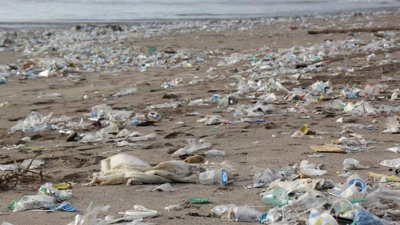 Umweltbehörde schlägt Plastik-Alarm