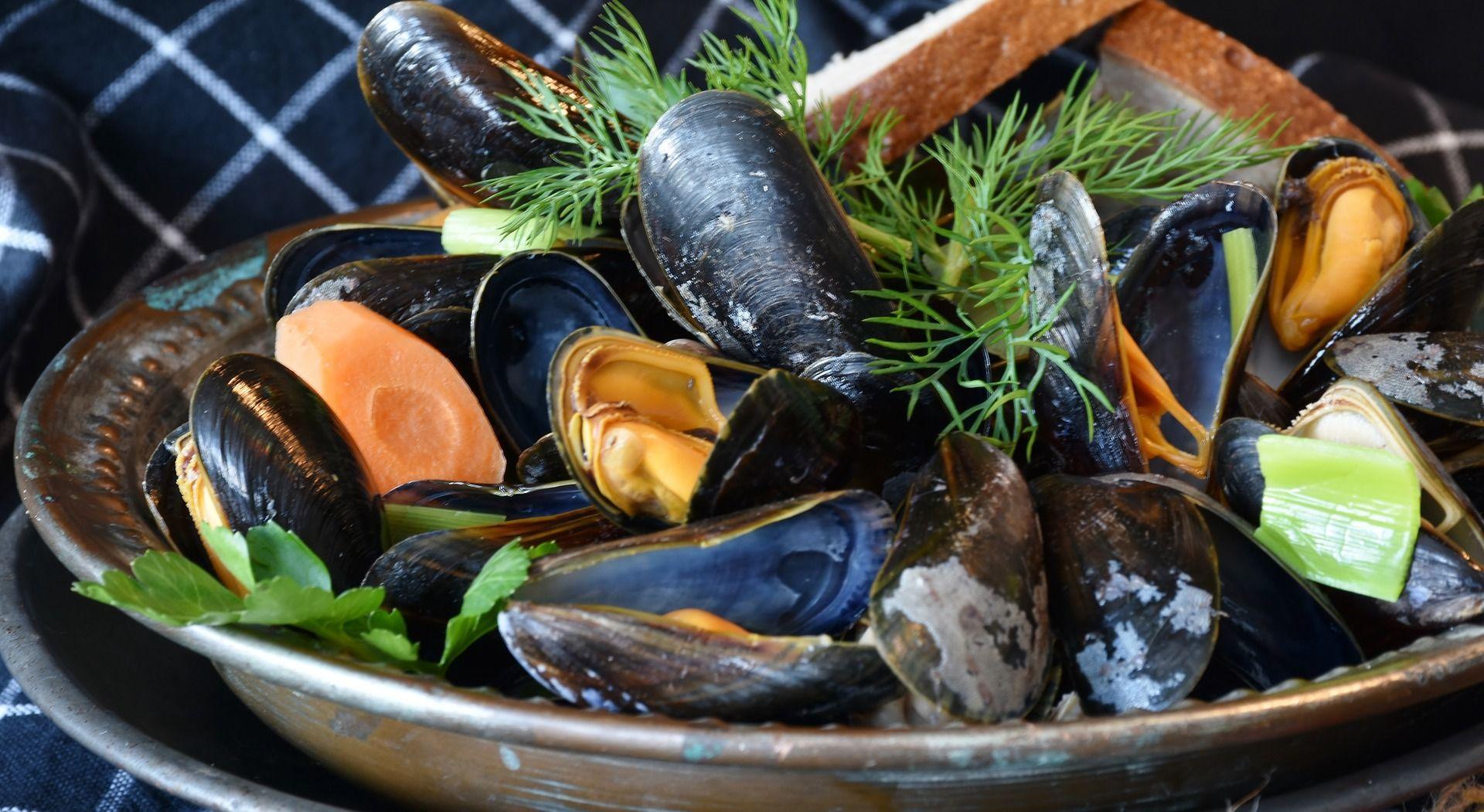 Bei Muscheln isst man Kunststoff mit